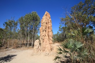The mother of all termite mounds